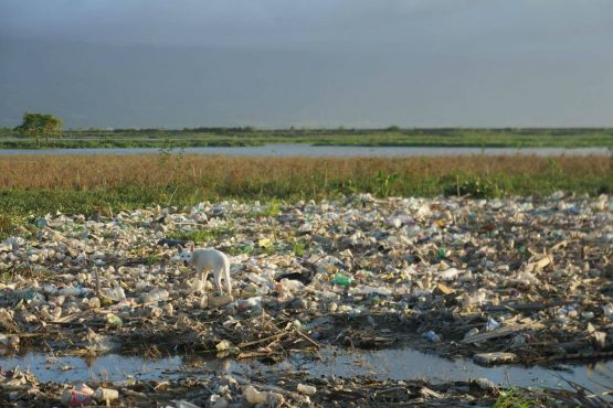 Tumpukan sampah di area Danau Limboto, Gorontalo (Sumber Foto : Beritagar.id). (WARTAPALA INDONESIA/ Meilan Mooduto WI 200201)